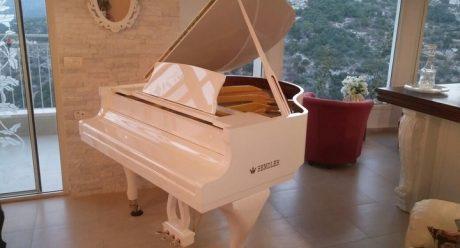 פסנתר כנף לבן