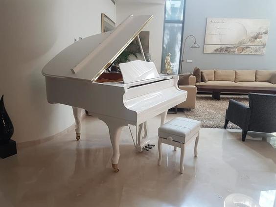 שונות פסנתר כנף לבן חדש SENDLER   פסנתרי הצפון - המרכז לפסנתרים SK-36