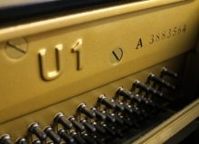 מציאת גיל פסנתר לפי מספר סידורי