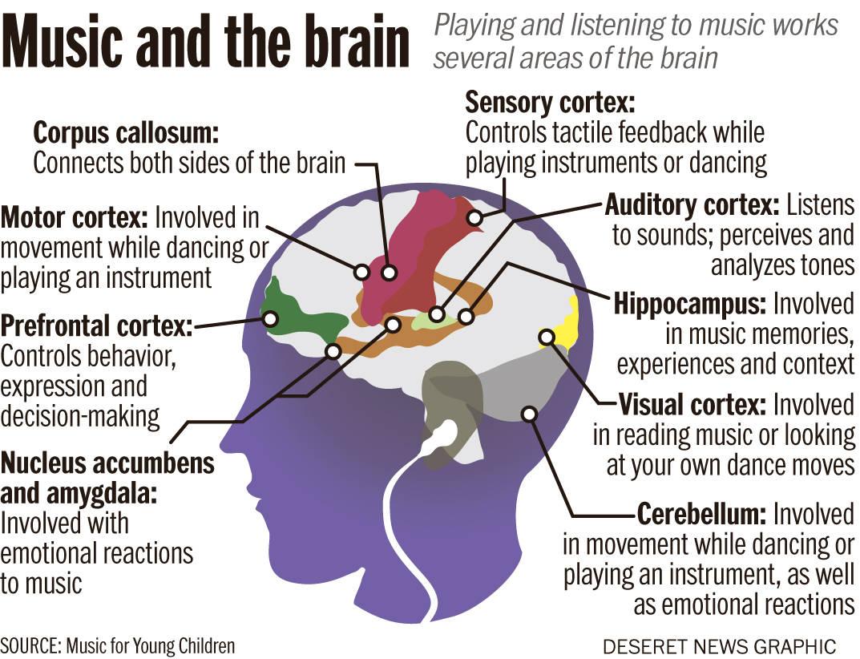 השפעת המוסיקה על המוח