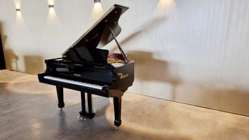 פסנתר כנף בייבי שחור
