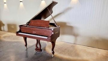 פסנתר כנף בייבי חום